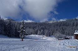 la tania ski slopes